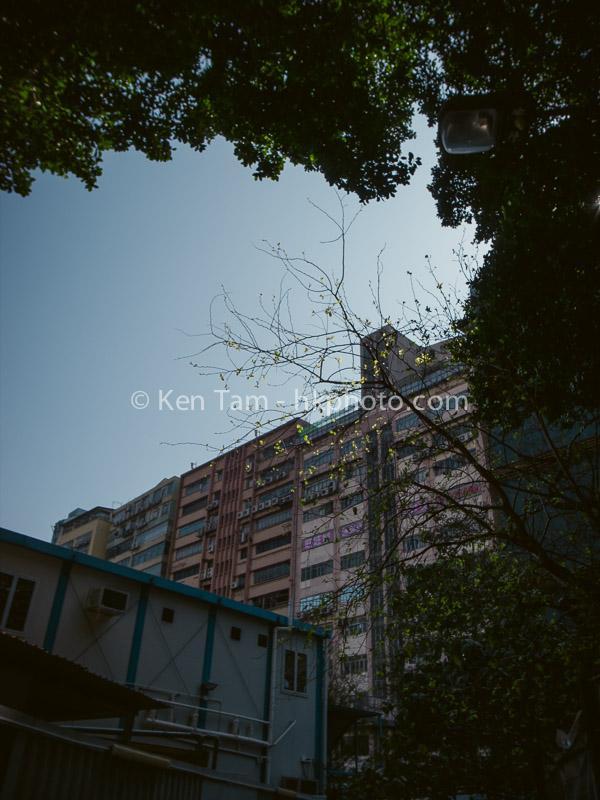 Ken Tam Photography - Zhuhai